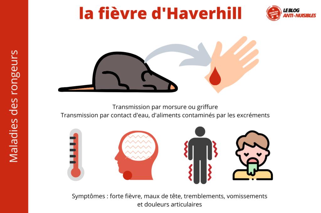 Fièvre d'Haverhill - rat bite fever