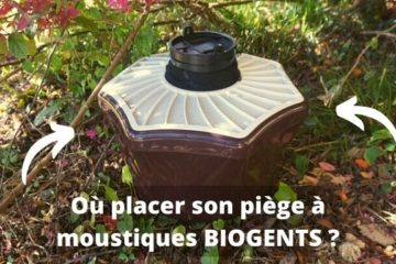 Positionnement piege a moustique biogents