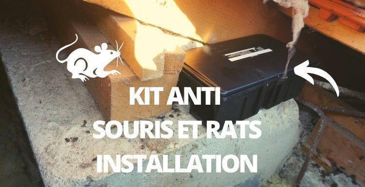 comment poser sa boite a appât pour souris
