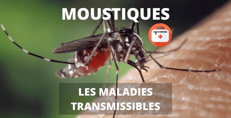 maladies moustique