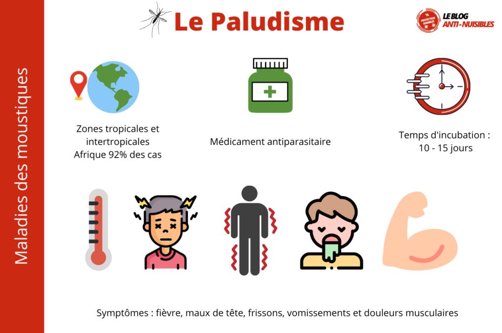 paludisme maladie moustique