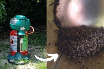 Piège moustique efficace mosquito magnet arcachon