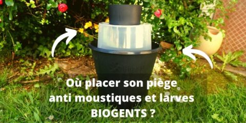 Bien positionner son pège à moustique anti larve biogents