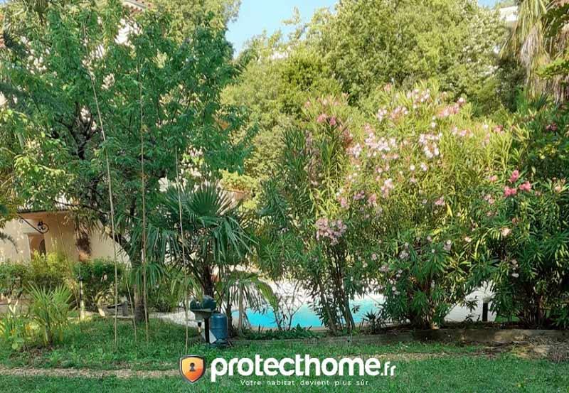 Piege moustique efficace grand jardin