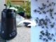 Avis piège moustique biogents bg home pour intérieur