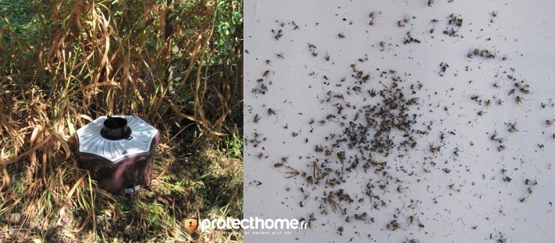 Piège moustique efficace biogents bg mosquitaire test