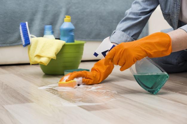 une bonne hygiène contre les rats et souris