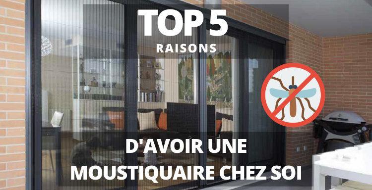 top 5 raisons d'avoir une moustiquaire chez soi